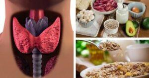 питание при гипотериозе